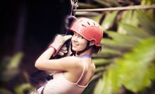 Ziplining and Rock-Climbing Adventure for One, Two, or Four from Vertical World Adventures (Up to 69% Off)