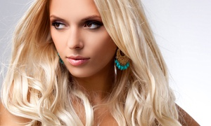 Hairstyling Services With Tara Cordisco At S. Todd Salon (up To 66% Off). Three Options Available.