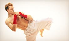 5 or 10 Drop-In Kickboxing Classes at Elite Plus MMA (Up to 72% Off)