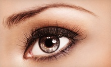 30-Piece or 60-Piece Eyelash-Extension Sets at Albina'SPA (63% Off)