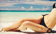One, Two, or Three Brazilian Waxes at Skin Theory (Up to 58% Off)