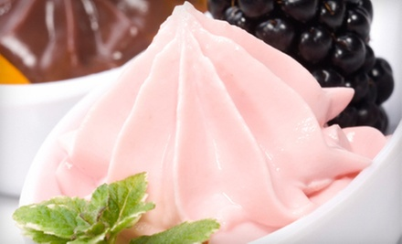 Five Visits for Frozen Yogurt or $5 for $10 Worth of Frozen Yogurt at I Can't Believe It's Yogurt