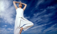 10 Yoga Classes or One Month of Unlimited Yoga Classes at Nirvana Wellness Center (Up to 81% Off)