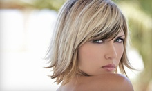 Men's Haircut, or Women's Haircut with Option for Full Color or Partial Highlights at Salon Element (Up to 54% Off)