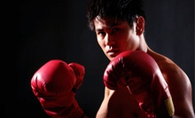 Four or Eight Private Boxing Lessons at Evolution Boxing (Up to 86% Off)