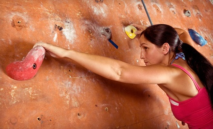 Rock Climbing for Two or One-Month, Six-Month, or One-Year Membership at Tennessee Bouldering Authority (Half Off)