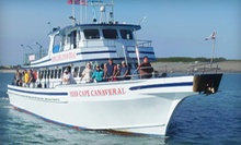 All-Inclusive Sunset Shark-Fishing or Half- or Full-Day Fishing Tour from Miss Cape Canaveral Fleet (Up to 55% Off)