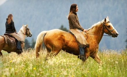 90-Minute Horseback Trail Ride for One, Two, or Four at Rockn' C Trail Rides (Up to 57% Off)