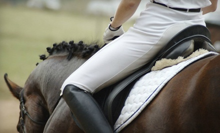 One, Two, or Four 30-Minute English Horseback-Riding Lessons at Dan Flowers Stable & Riding Academy (Up to 66% Off)