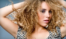 Haircut and Style with Option for Partial Highlights from Bridgette at Fringe Salon & Spa (Up to 59% Off)