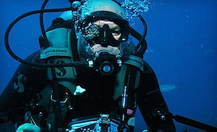 Regular or Advanced PADI Open-Water-Dive Certification Course at Jupiter Dive Center (Up to 58% Off)