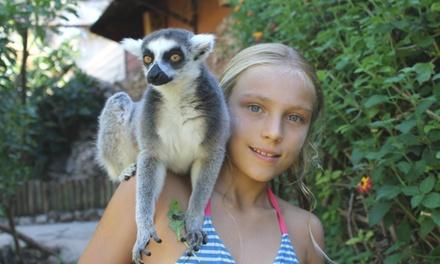 Krazyworld Zoo — Algoz: bilhete duplo e fotografia infantil por 12€