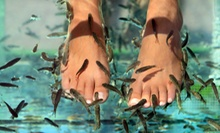 One or Two Manicures and Dr. Fish Pedicures at Yvonne's Day Spa (Up to 53% Off)