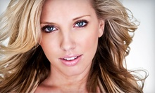 Haircut Package, Partial Highlights with 18 Foils, or a Single-Process Color Package at Salon Dargento (Up to 55% Off)