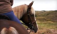 One, Two, or Four Private Horseback-Riding Lessons at Crossroads Natural Horsemanship (Up to 53% Off)