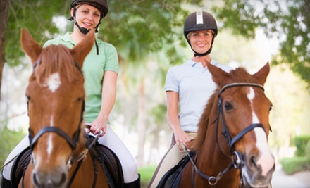 One or Two One-Hour Horseback-Riding Lessons at Crossroads Ranch (Up to 51% Off)