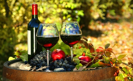 Winery Tour and Wine Tasting for Two or Four at Hopewell Valley Vineyards (Half Off)