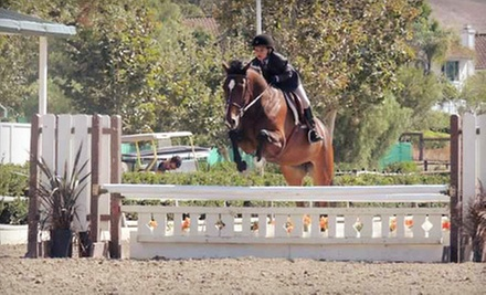 One or Three One-Hour Horse-Riding Lessons at Vogel Equine in Costa Mesa (Up to 56% Off)