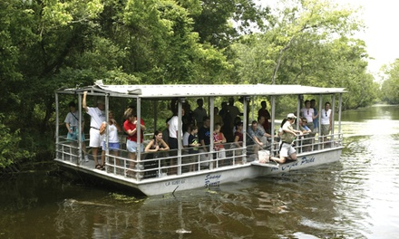 Swamp Boat Tour  for One, Two, Four, or Six from Cajun Pride Tours (Up to 50% Off)