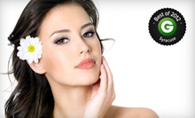 Two, Four, or Six Facials with Microdermabrasion Treatments at Studio 11 Salon and Day Spa (Up to 79% Off)