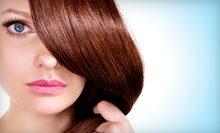 Haircut Package with Conditioning Treatment, Style, and Optional Highlights at MJ Salon and Color (Up to 58% Off)