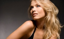 Cut with Conditioning or Full Color, 20 Foil Highlights, or Half-Head Highlights at Shear Elegance Salon (Up to 57% Off)