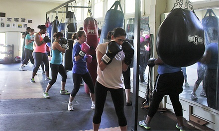 10- or 20- Class Pass or Three Private Training Sessions at Boxing for Health (Up to 80% Off)