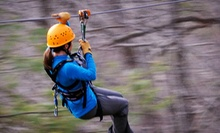 Zipline Canopy Tour for One, Two, or Four from French Broad Rafting Expeditions (51% Off)