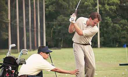 One 60-Minute Private Golf Lesson or Four Private Lessons with Video Swing Analysis at Greg Smith Golf (Up to 63% Off)