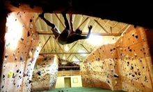 Three or Five Indoor Rock-Climbing and Fitness Visits at Bridges Rock Gym (Up to 75% Off)