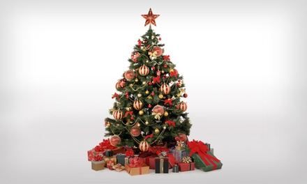$30 for $50 Worth of Christmas Trees and Accessories at Little Elf's Christmas Trees
