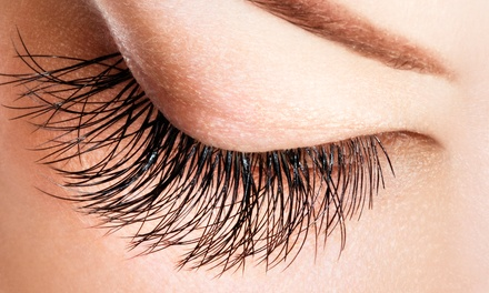 $79 for One Complete Set of Eyelash Extensions at Lash Studio One ($250 Value)