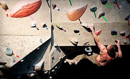 One-Hour Rock-Climbing Lesson and All-Day Climbing Pass for One, Two, or Four at Sport Climbing Center (Up to 63% Off)