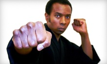 10 or 20 Martial-Arts or Kickboxing Classes at Duncan Martial Arts (Up to 87% Off)