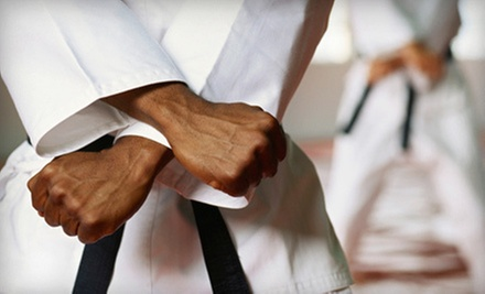 $45 for 10 Adult or Youth Kojukai or Combat Fitness Kickboxing Classes at East Coast Karate II ($150 Value)