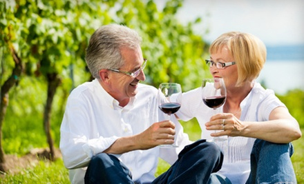 Wine Tasting and Vineyard Tour for Two or Four at St. Jordan Creek Winery (Half Off)