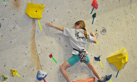 Kids' Three-Day Climbing Camp or Kinder Climbing Camp at Ibex Climbing Gym (Up to 56% Off). 19 Options Available.
