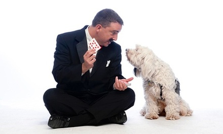 $1,250 for a Private Holiday Corporate Magic Show with Magician Ash K. ($2,500 Value)