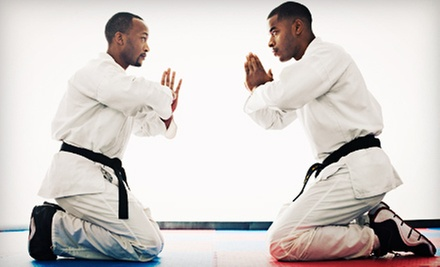 One or Two Months of Mixed-Martial-Arts Classes at Fight Sports Naples (Up to 85% Off)