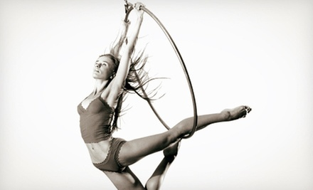 One, Four, or Eight Aerial, Fitness, or Acrobatic Classes at Antigravity NTF (Up to 78% Off)