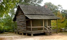 $12 for an Annual Family Membership at Lexington County Museum ($25 Value)
