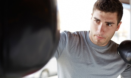 Two Personal Training Sessions at Southside Boxing Club (65% Off)