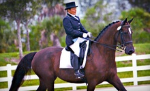 One, Two, or Three 30-Minute Private Riding Lessons at Lazy Meadows Farm (Up to 54% Off)
