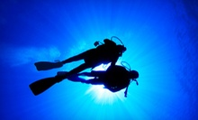 $70 for an Introductory Scuba-Diving Lesson from Canyon Lake Divers ($140 Value)