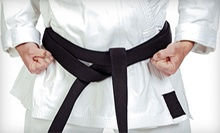 10 or 16 Martial-Arts Classes with Uniform at Changing Lives Martial Arts (Up to 94% Off)