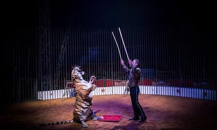 Circo Mundial — Tomar: bilhete de criança por 6€ ou de adulto por 8€