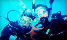 $299 for a PADI National Geographic Open-Water Scuba Certification at Aquanautics Dive ($625 Value)