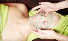 One or Three European Facials with Steam and Hydrating Mask at Day Spring Wellness Spa (Up to 61% Off)