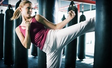 One Month of Unlimited Martial-Arts Classes or Kids' Karate Birthday Party at Premier Martial Arts (Up to 75% Off)