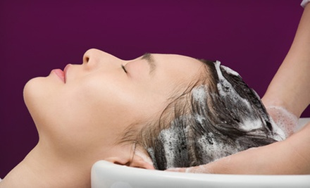 Wash and Blow-Dry with Optional Partial Highlights at Total Beauty Care (Up to 60% Off)